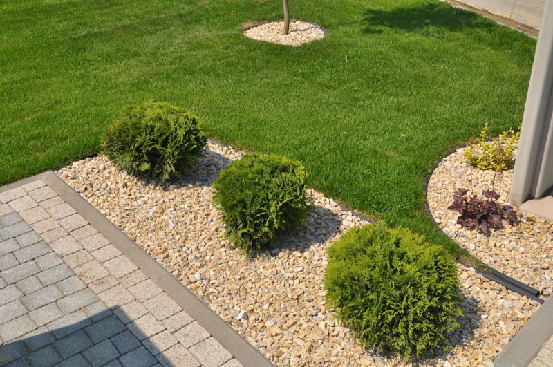 How to Care for Sod