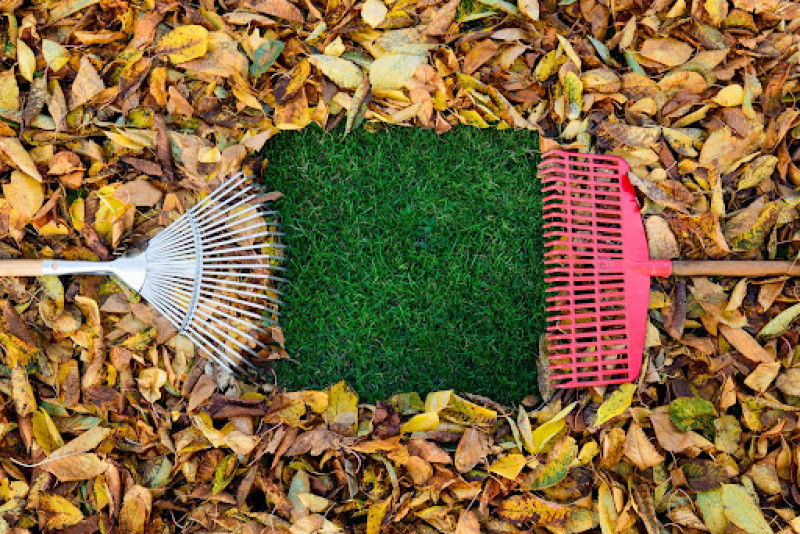 Summer to Fall: Keep Your Landscape Pristine for Colder Months Ahead